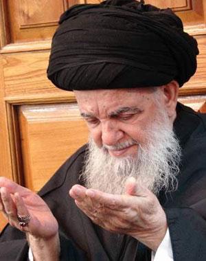 سید محمد عزالدین حسینی زنجانی (۱۳۰۰-)