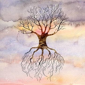 انشا صفحه 96 نهم | انشا درمورد درختی که پادرهواست