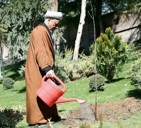 باغ پسته آیت الله هاشمی   رفسنجانی ها در آمریکا باغ پسته زدند!   هاشمی چند هکتار باغ داشت؟